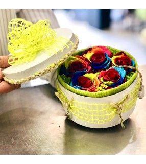Boite 5 Roses Éternelles Rainbow avec sa mousse d'islande parfumée. AnyFleurs.fr